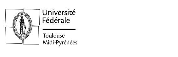Rapport d'activité 2020 de l'Université fédérale toulouse Midi-Pyrénées